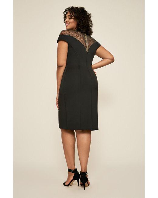 4d1f999752f ... Tadashi Shoji - Black Asher Neoprene Dress - Plus Size - Lyst ...