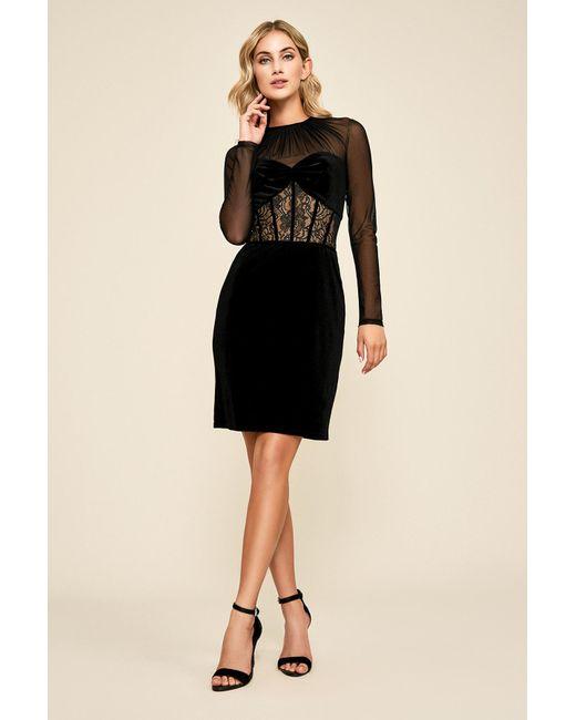 62ec485e236b Tadashi Shoji - Black Sabina Long-sleeve Velvet Dress - Lyst ...