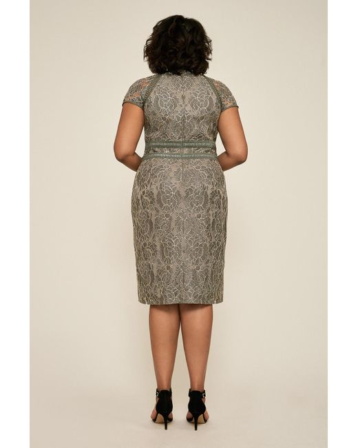 fd1a66be44715 ... Tadashi Shoji - Multicolor Runyon Lace Embroidered Dress - Plus Size -  Lyst ...