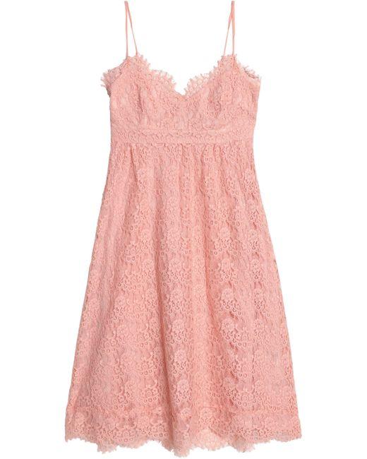 Claudie Pierlot - Pink Corded Lace Cotton-blend Dress - Lyst