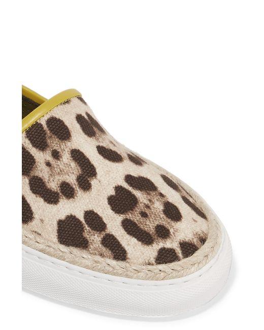 dolce gabbana leopard print canvas slip on sneakers in
