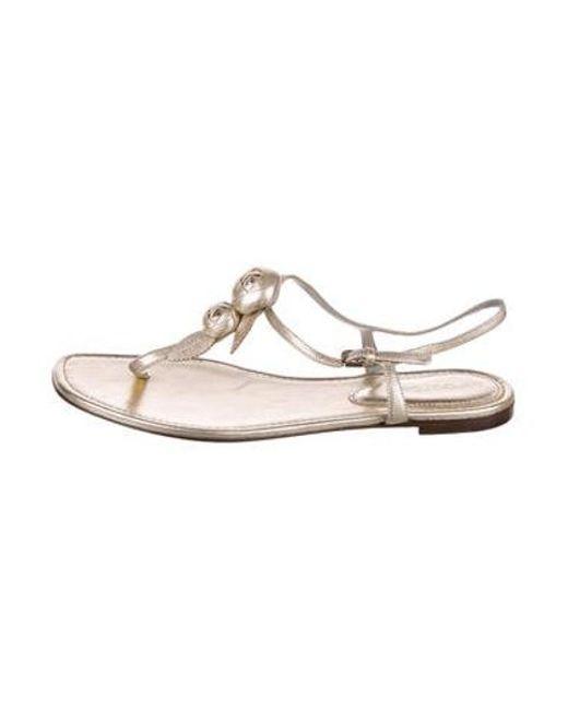 a81b72caa51d Sergio Rossi - Metallic Rosette Thong Sandals Gold - Lyst ...