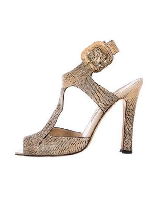 d3427f92014 Manolo Blahnik - Natural Lizard T-strap Sandals Tan - Lyst ...
