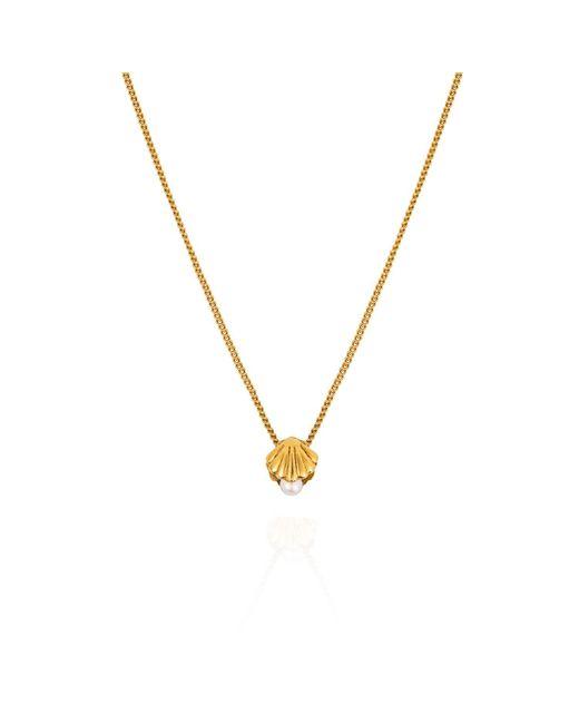 Lee Renee - Metallic Mini Shell & Pearl Necklace – Gold Vermeil - Lyst