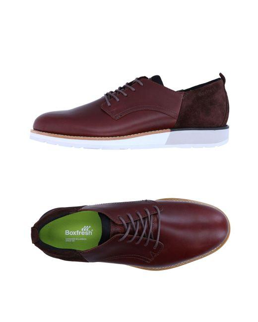 Boxfresh | Purple Lace-up Shoe for Men | Lyst