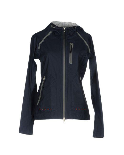 parajumpers blue jacket
