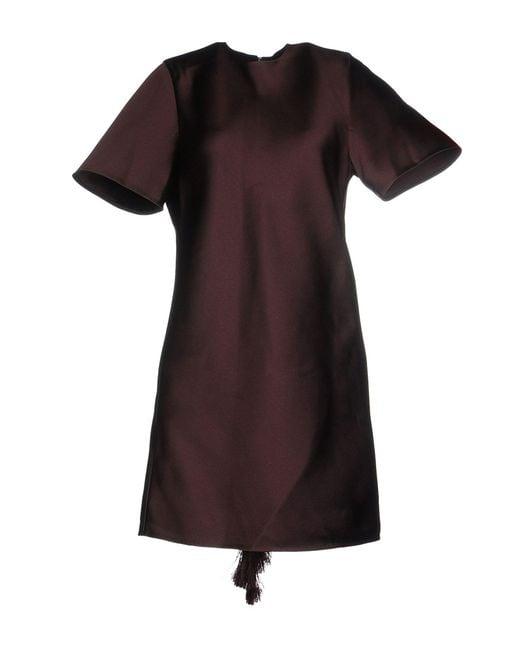 Alexander Wang - Purple Short Dress - Lyst
