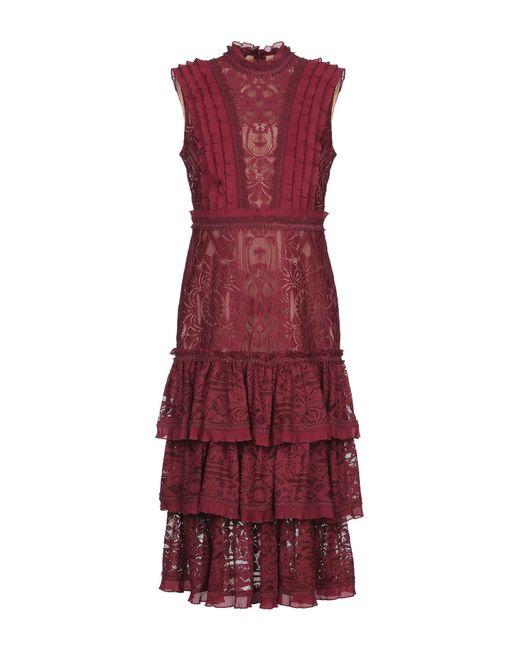 Jonathan Simkhai Purple 3/4 Length Dress