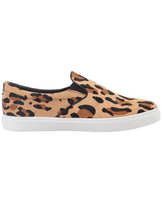 378bd8c1b38 ... Lyst Steve Madden - Multicolor Ecentrcl Sneaker (leopard) Women s Shoes  ...