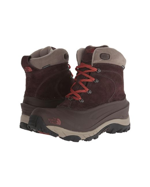 The North Face | Brown Chilkat Ii for Men | Lyst