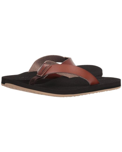 Cobian - Loreto (brown) Men's Sandals for Men - Lyst