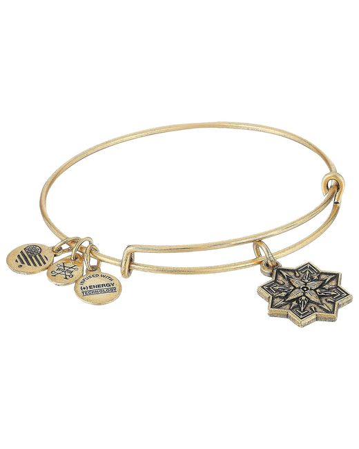 ALEX AND ANI - Metallic Healing Love Ii Bangle (rafaelian Silver) Bracelet - Lyst