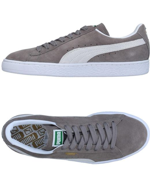 PUMA Men's Gray Low-tops & Sneakers