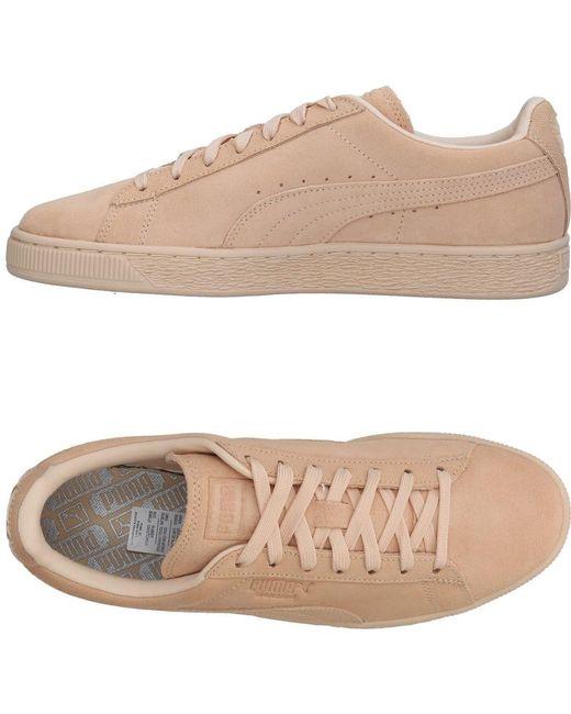 PUMA Men's Natural Low-tops & Sneakers