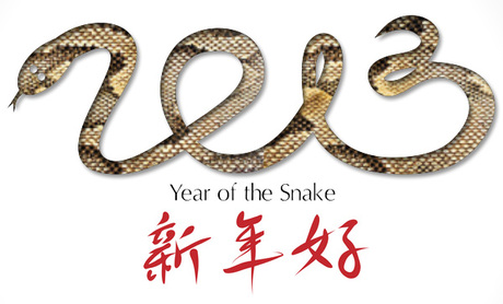 Chinese New Year and Spring 2013 Reptile Prints