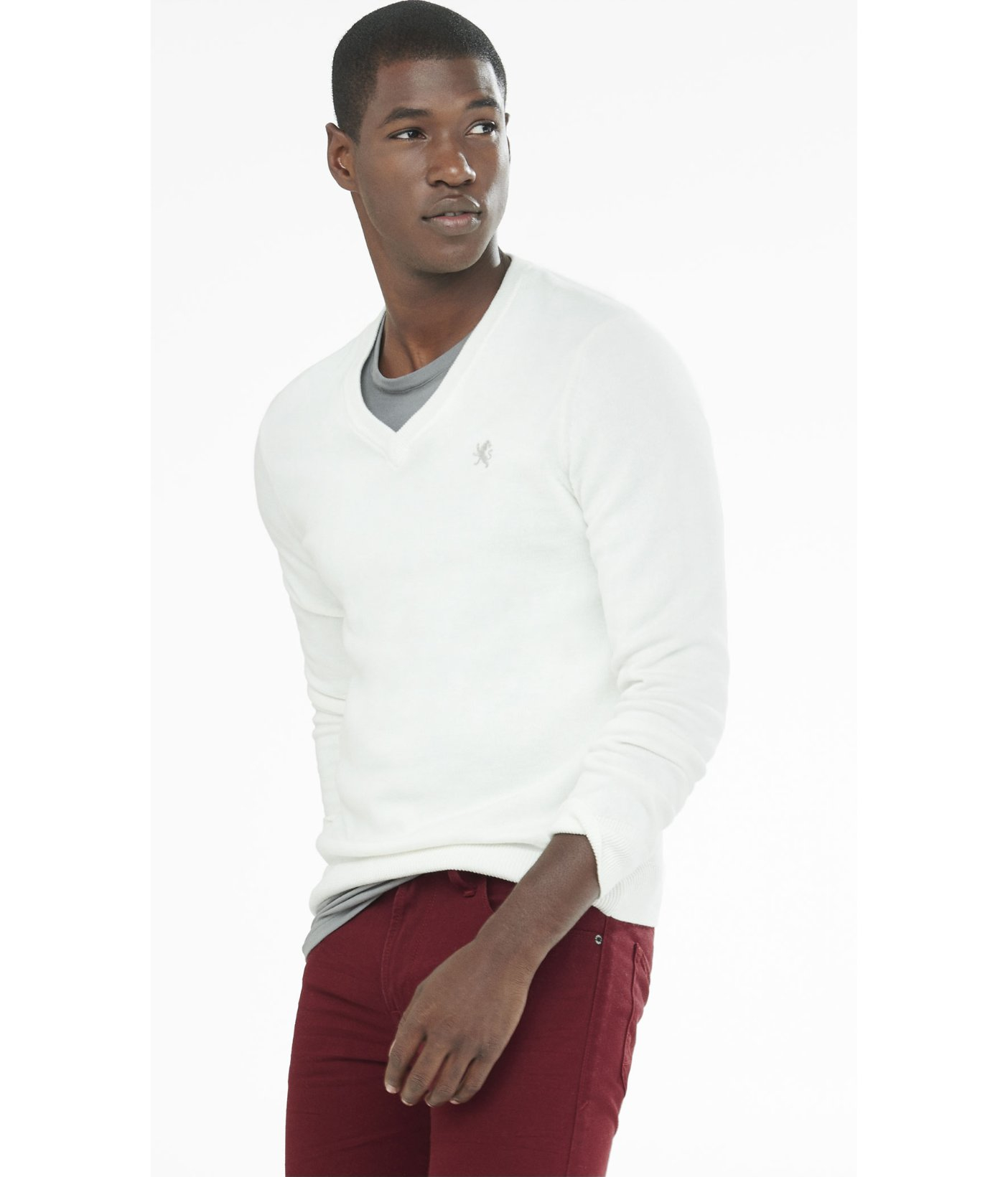 Express Cotton V-neck Small Lion Sweater in White for Men | Lyst