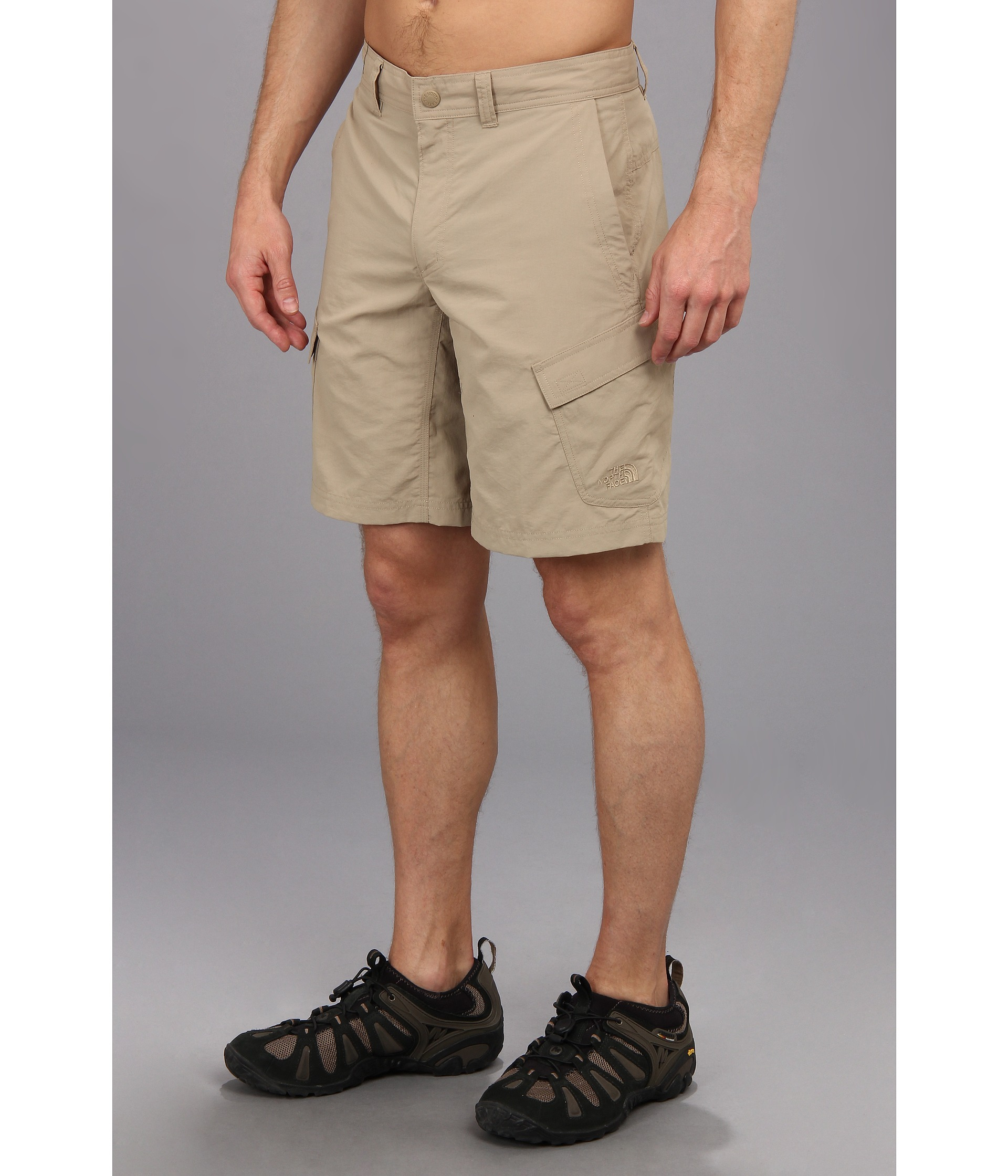 d909f32e90 The North Face Horizon Ii Cargo Short in Natural for Men - Lyst