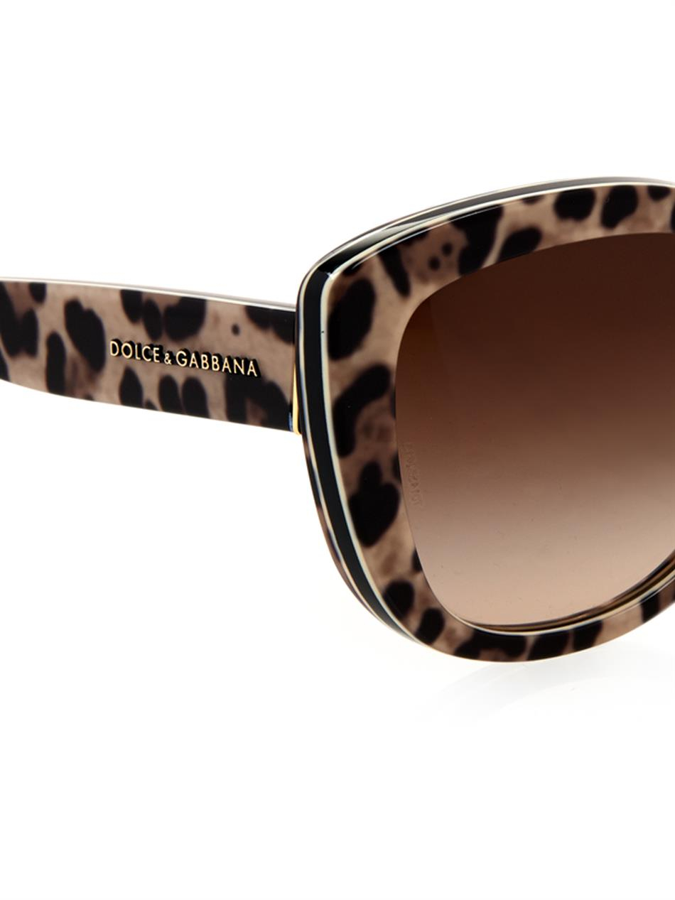 6443831a073e Dolce & Gabbana Leopard-Print Cat-Eye Sunglasses - Lyst
