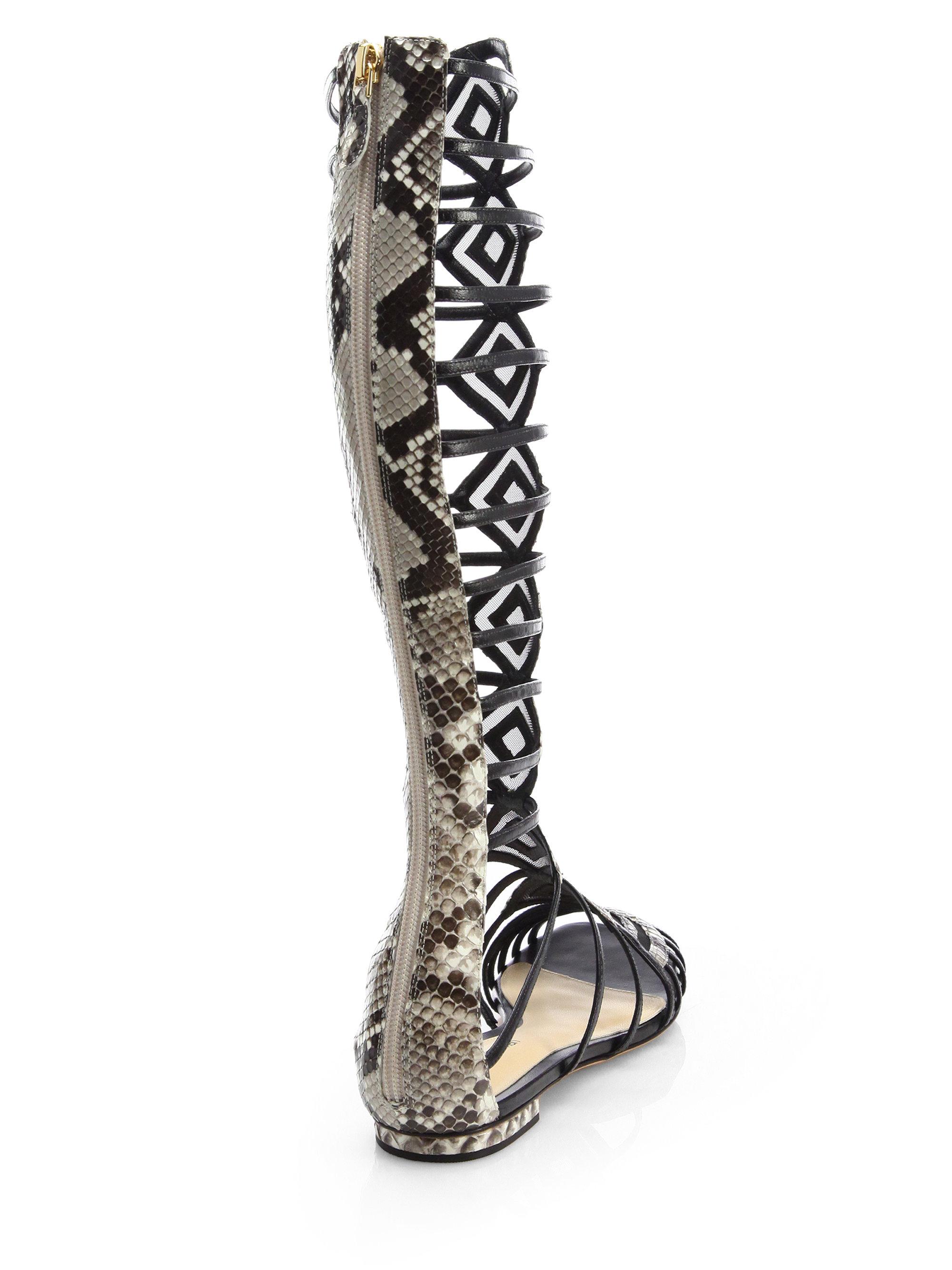 alexandre birman python gladiator knee high sandal boots
