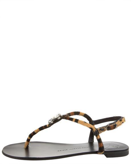 1c7c54ef1ff709 Zanotti Leopard-print Flat Thong Sandal in Animal (leopard)