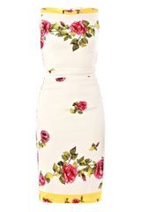 Dolce & Gabbana Pink Rose Print Dress - Lyst