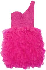 Rare Opulence Lace and Tulle Tutu Dress