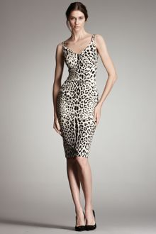 Dolce & Gabbana Leopard-print & Lace Dress - Lyst