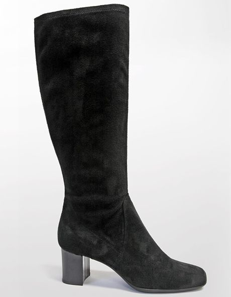 tahari delia sueded stretch boots in black black