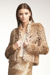 Haute Hippie Cheetah-print Fur Jacket - Lyst