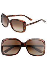 Gucci Classic Stripe Temple Sunglasses - Lyst