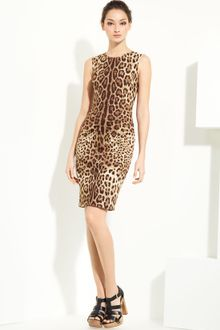 Dolce & Gabbana Leopard Print Stretch Cotton Dress - Lyst