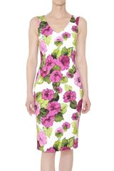 D&G Dhalia Print Stretch Gabardine Dress - Lyst