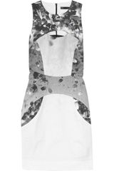 Aminaka Wilmont Printed Stretch-cotton Mini Dress