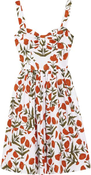 Oscar de la Renta Printed Cottonblend Dress - Lyst