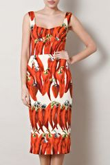 Dolce & Gabbana Chilli Print Dress - Lyst