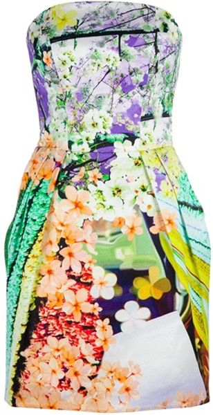 Mary Katrantzou Floral Bustier Dress - Lyst