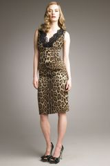 Dolce & Gabbana Lace-neck Leopard-print Dress - Lyst