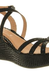 Office Wept Wedge Black Snake - Lyst