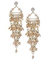 Oasis Tassel Drop Earrings - Lyst