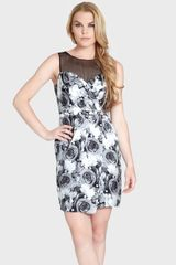 Cynthia Steffe Elle Print Illusion Yoke Silk Sheath Dress - Lyst
