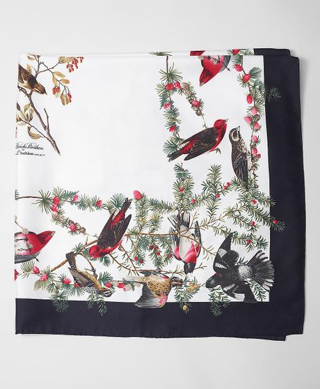 Brooks Brothers Audubon Songbirds Scarf in Black (burgundy)