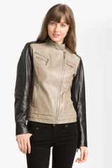 Laundry By Shelli Segal Asymmetrical Zip Colorblock Leather Jacket - Lyst