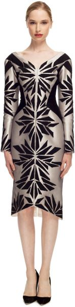 Bibhu Mohapatra Embroidered Tulle Long Sleeve Dress in Black (black/silver)