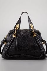 Chloé Paraty Medium Python Shoulder Bag Black - Lyst