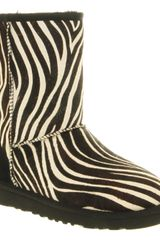 Ugg Classic Short Boot Zebra Suede in Animal (zebra) - Lyst