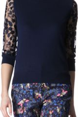 Erdem Rose Sweater