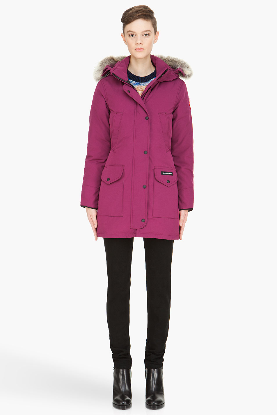 canada goose berry color