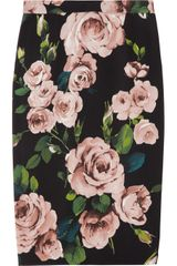 Dolce & Gabbana Rose Print Crepe Pencil Skirt