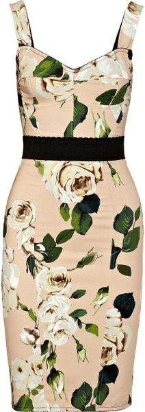 http://cdnb.lystit.com/photos/2013/01/09/dolce-gabbana-rose-roseprint-crepe-bustier-dress-product-1-5994940-134002355_medium_flex.jpeg
