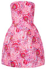 Topshop Rose Print Lantern Dress